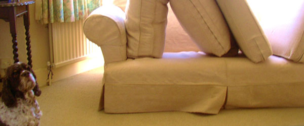 Carpet and Upholstery Care
