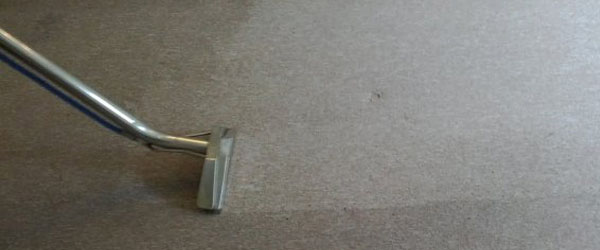 Contract Carpet Cleaning