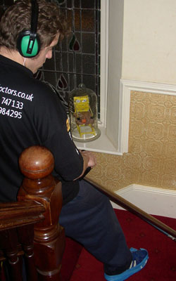 Eco-Friendly Carpet Cleaners